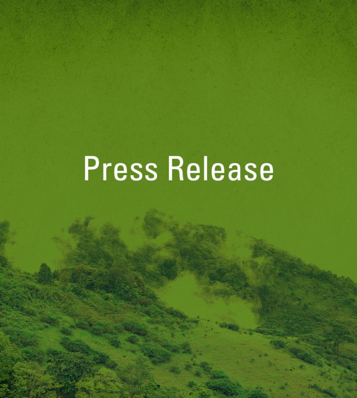 Burgerwetenschap om ontbossing tegen te gaan