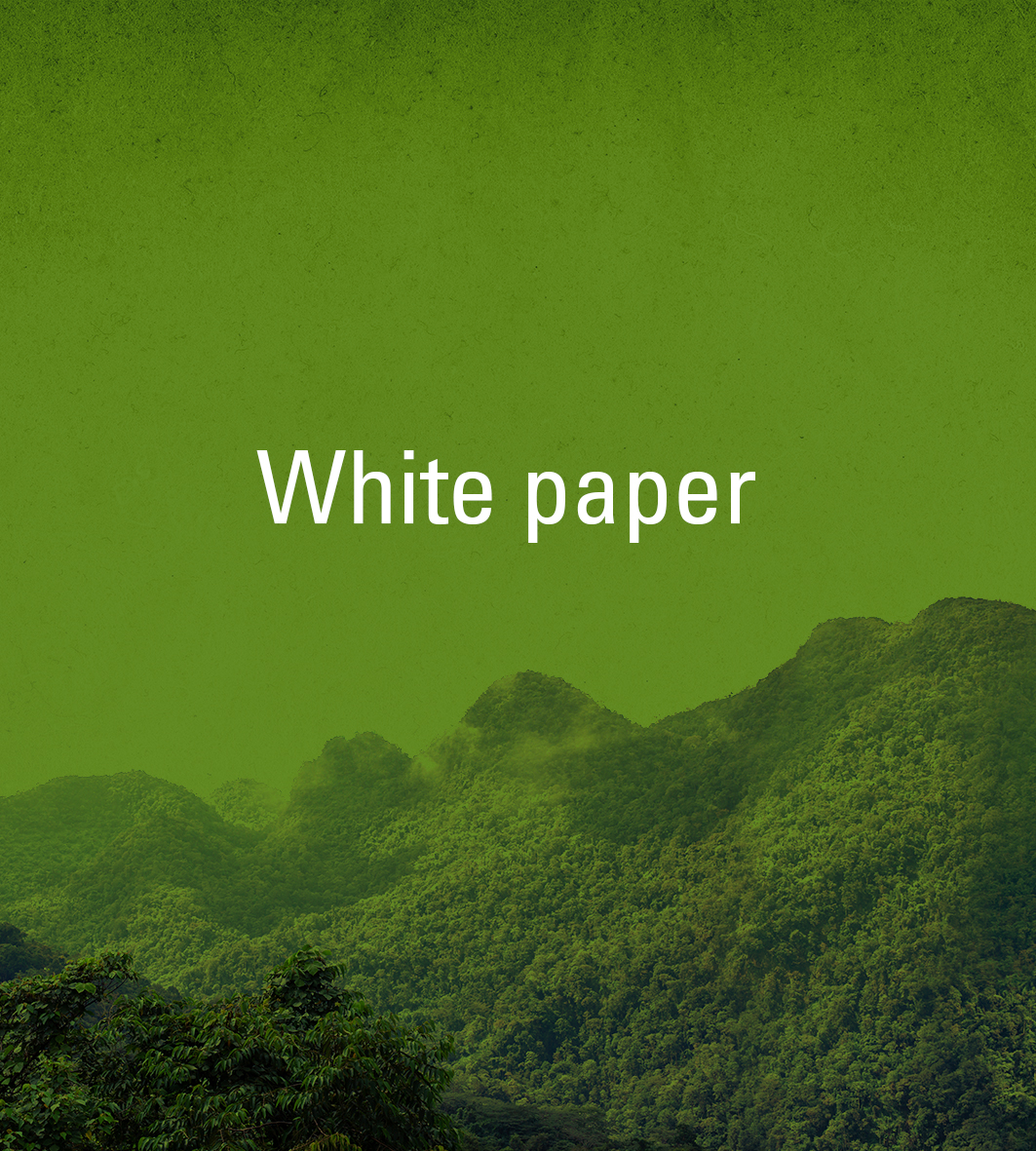 Collaborative (Co)-Management as a Model for Bio-Cultural Conservation in Suriname